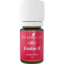 Exodus II